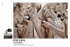 Muzyka z reklamy perfum Prada L'Eau Ambrée