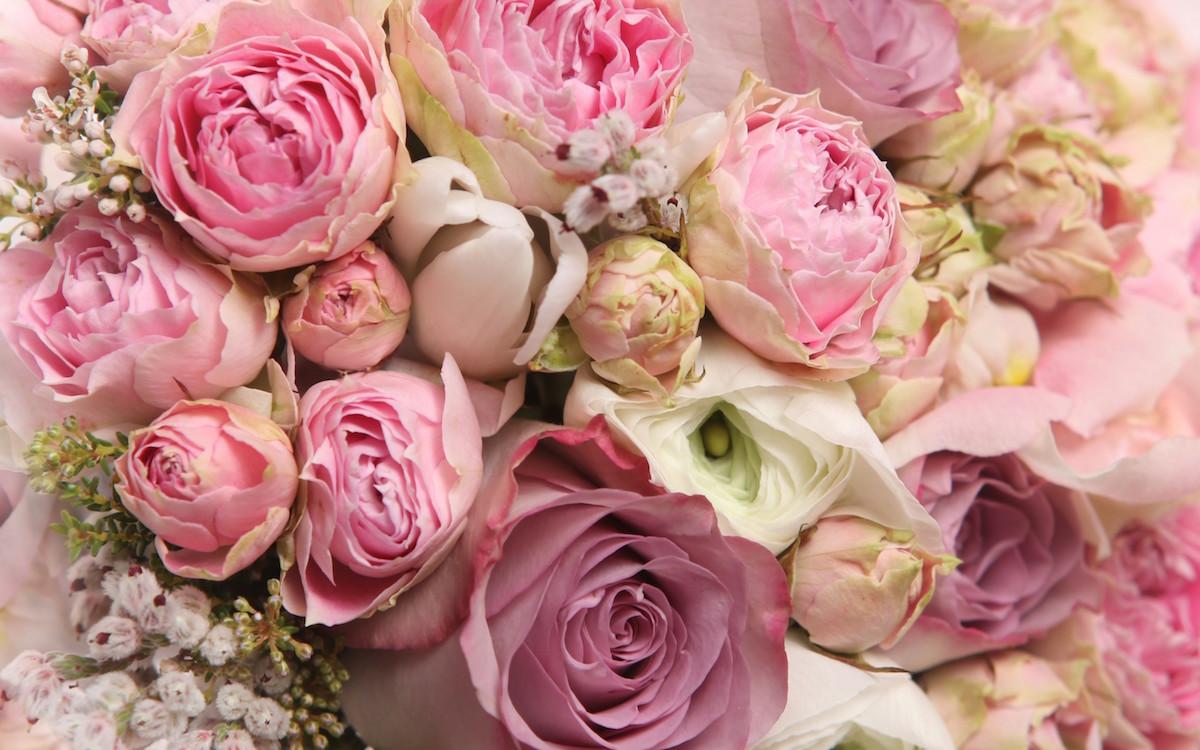 Czy Kobiety Lubią Dostawać Kwiaty Olfaktoriapl